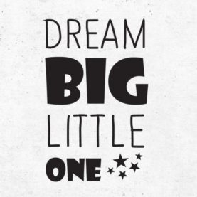 napis za steno dream big