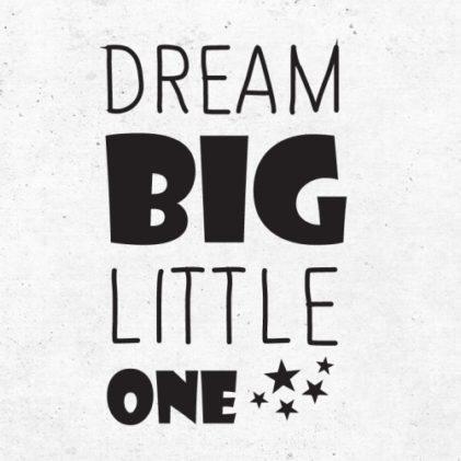 napis za steno dream big